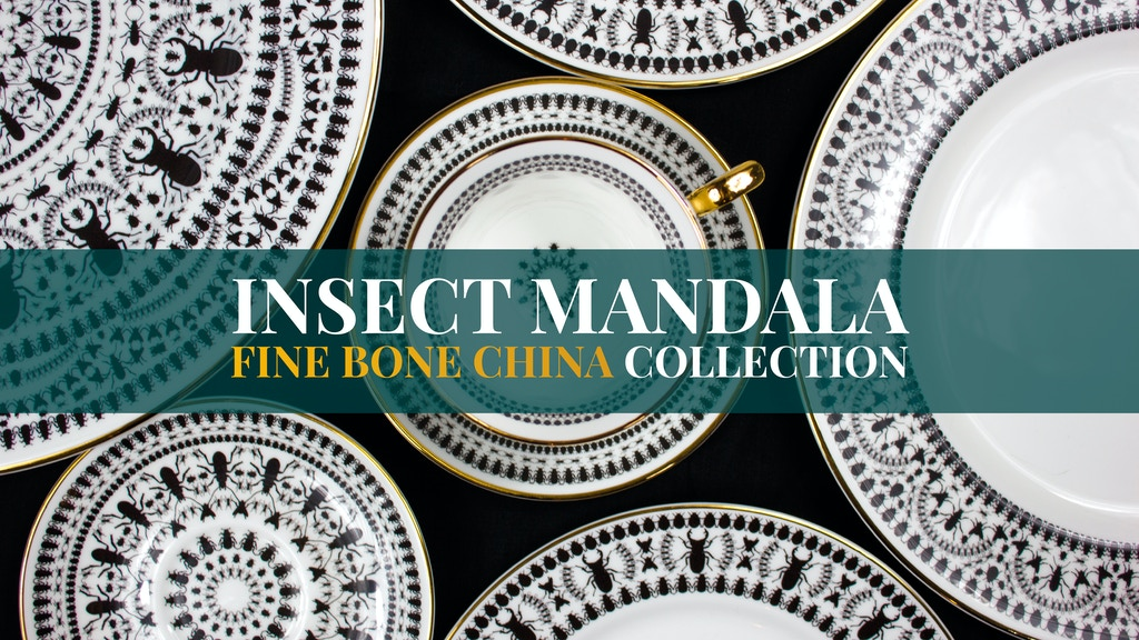 'Insect Mandala' Fine Bone China Collection (Made in the UK) project video thumbnail