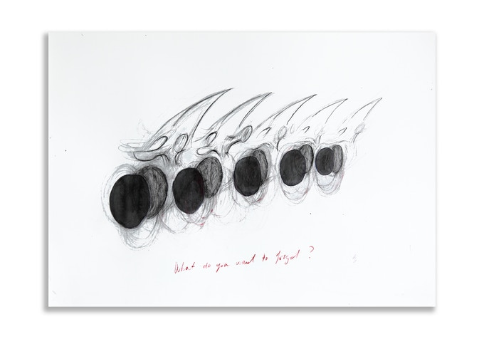One limited edition original drawing on heavy cotton paper (50 x 70 cm), two fine art print photographs, catalogue - 1.000 €