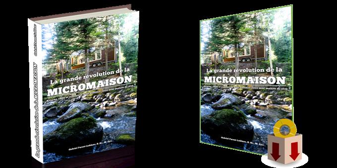Deux versions: papier et ebook