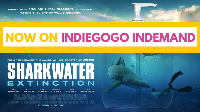 A documentary to SAVE SHARKS by exposing the billion dollar industries that are lying to you! A new shocking film from Rob Stewart!