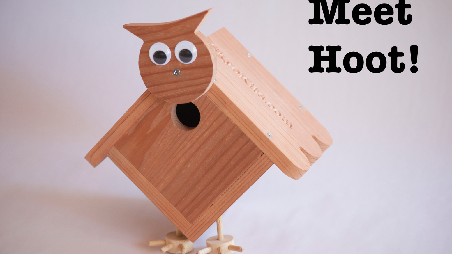 Hoot A Timeless Stem Project Kit For Families By George