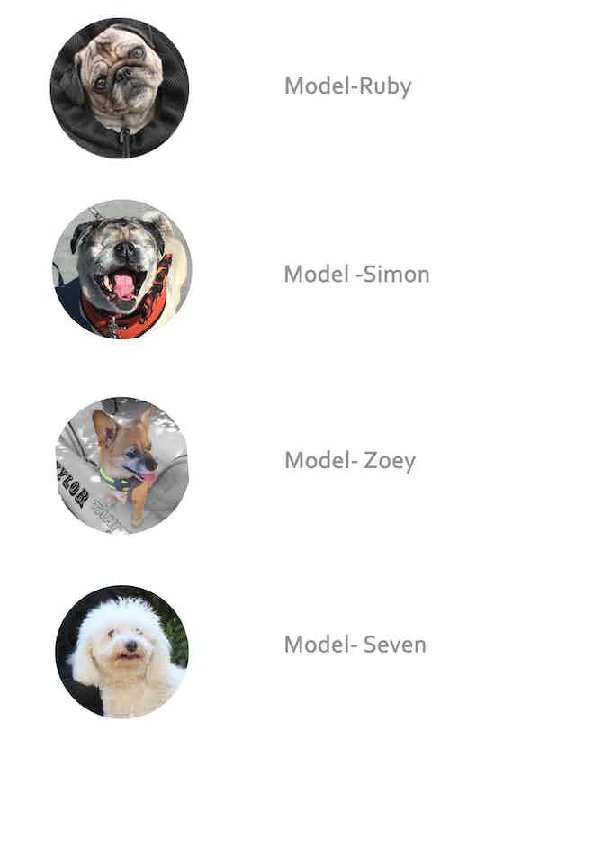 DogPack models