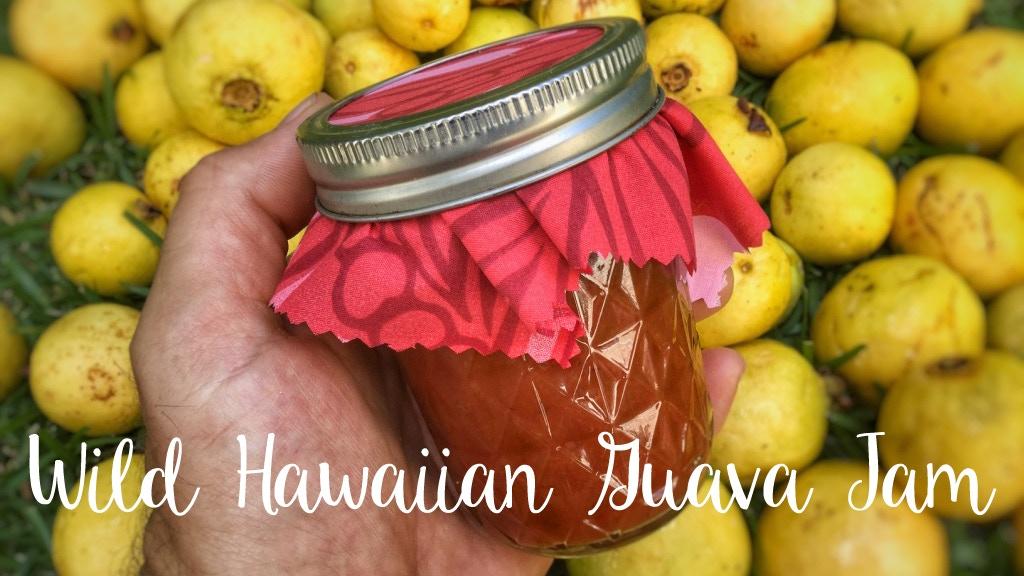 Wild Hawaiian Guava Jam project video thumbnail