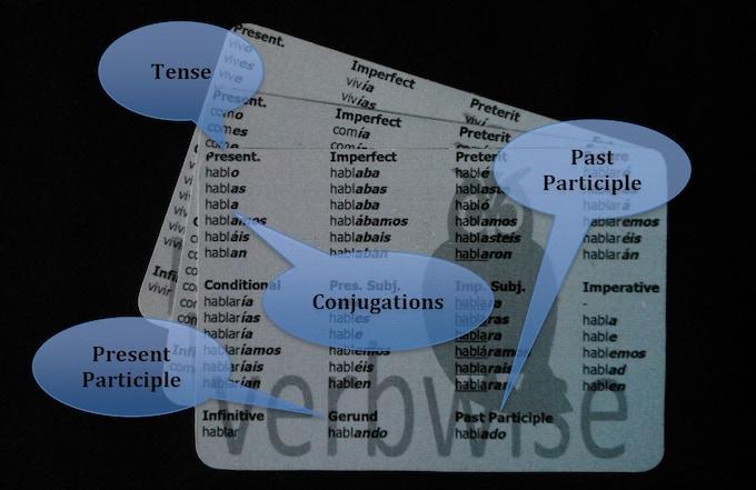 Verbwise -  back of regular cards