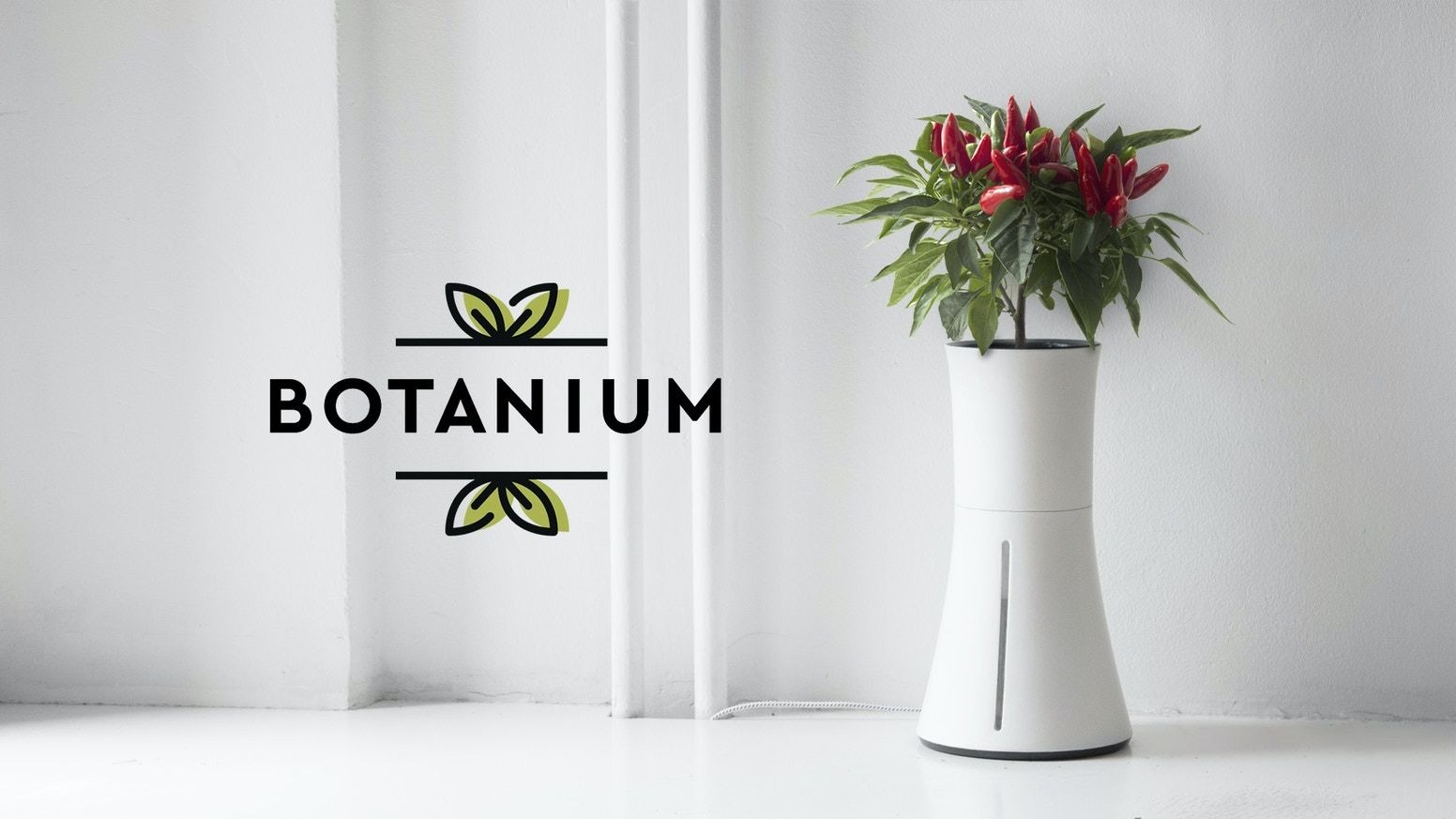 Enjoy growing herbs or chili without effort. Botanium takes care of the plant for you, thanks to automated, soil-free growing.