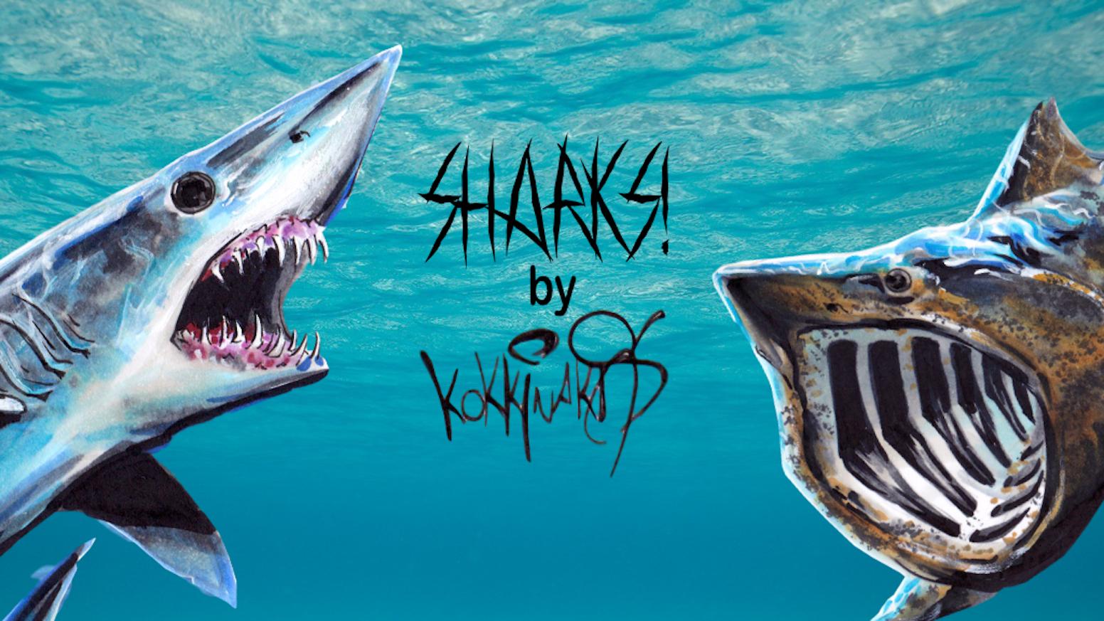 Sharks Trading Cards By Attic Card Company Kickstarter