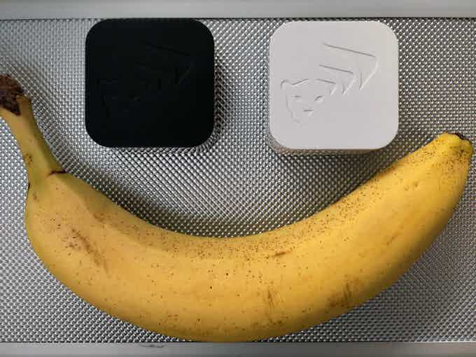Banana for scale :)