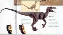 Jurassic Park Raptor Suit