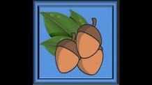 Nut Slingers
