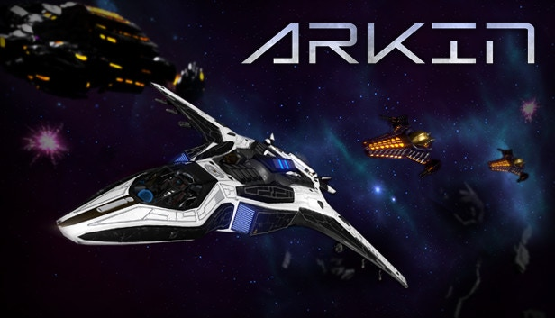 A first-person space combat experience featuring epic large-scale battles, an in-depth story, and extensive ship customization.