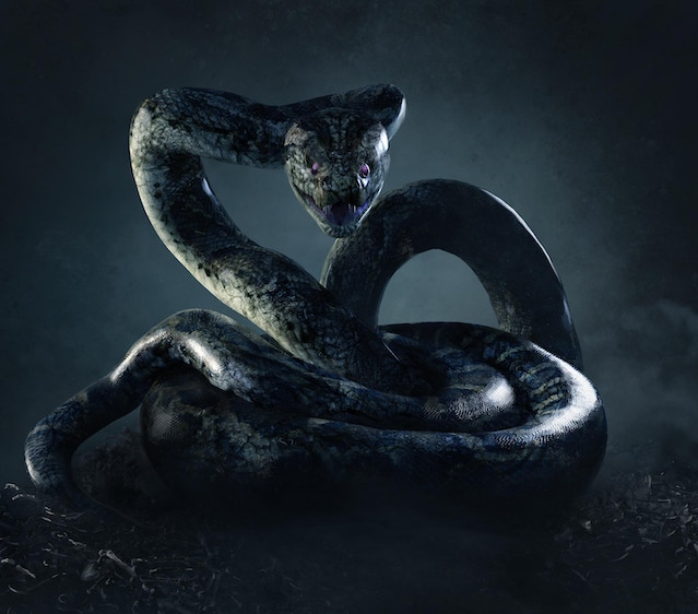 Python : Guards the Oracle of Delphi [BG KSE] Be0a643677c9f6429a6324e8f59541fc_original