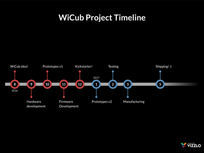 WiCub Project Timeline