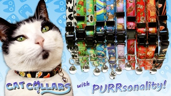 Cat Collars with PURRsonality!