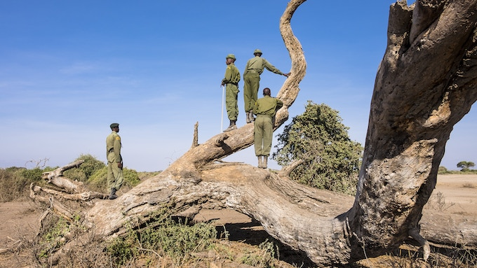 Big Life rangers patrolling the Kenya-Tanzania border    @Axel Fassio