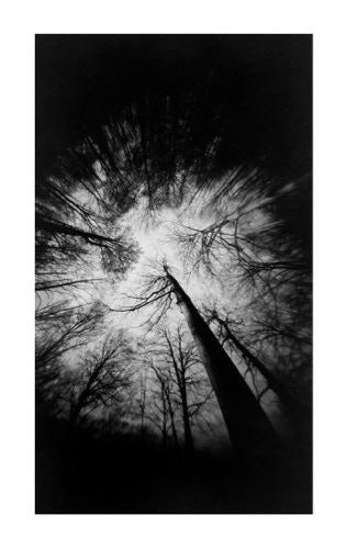 Outer Heavens II, ©Marko Umicevic 2016