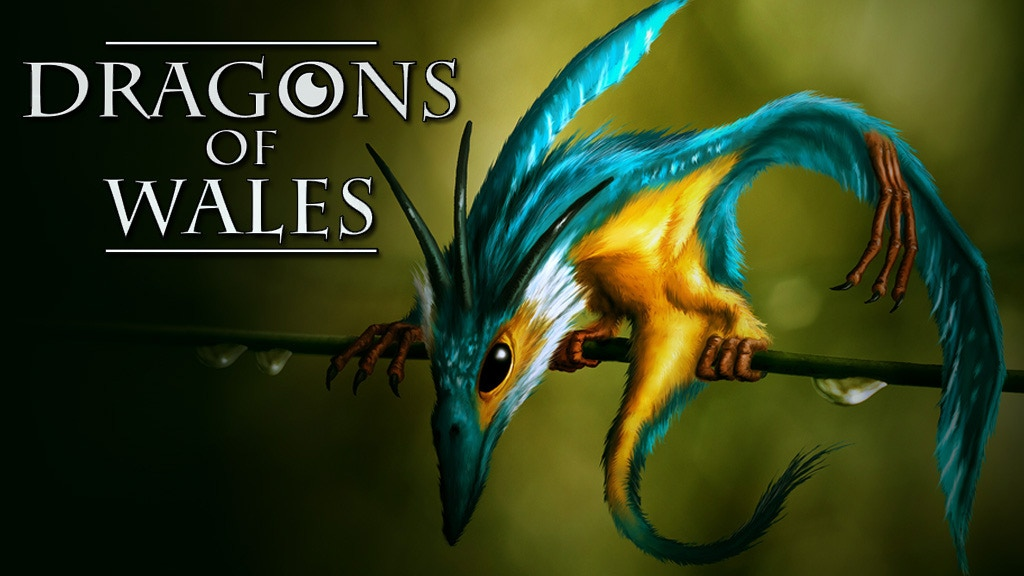 Dragons of Wales project video thumbnail