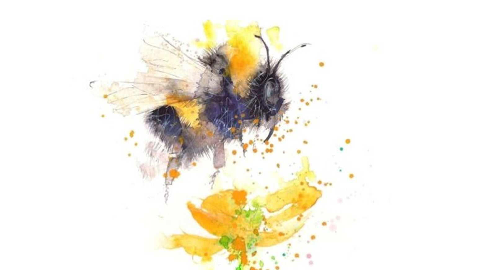 LET'S GET READY TO BUMBLE!!  Use your worker bee to dominate the hive and venture out into the meadow to collect the most nectar.For post campaign enquires; sales@museinteriors.co.uk