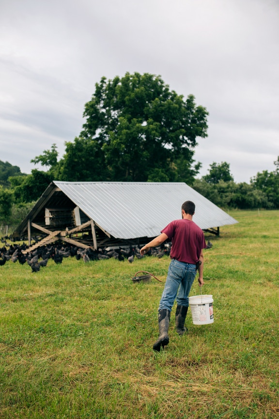 We'll be visiting farms like this one (Polyface Farms in Virginia)