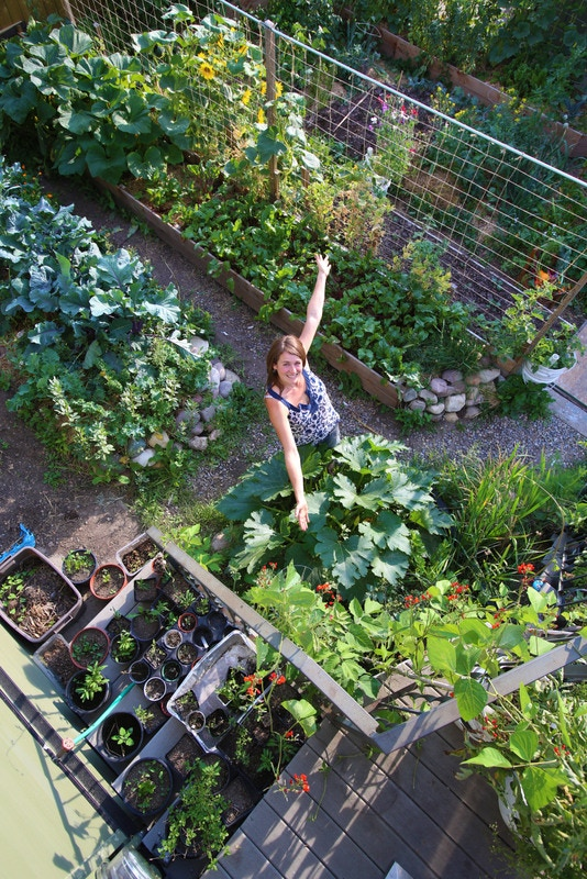 Rob's yard at Verge Permaculture