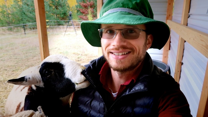 Top notch grass-fed lamb operation