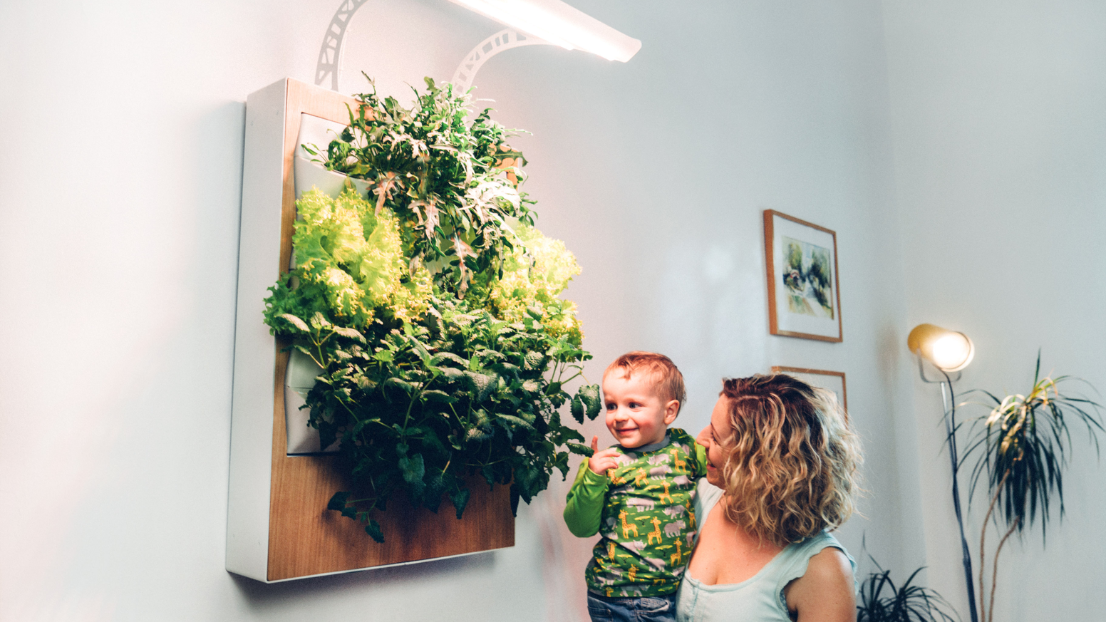 The hydroponic vertical farm for your home. Simple, clean and 40% more efficient. Salads and more in your indoor garden all year around