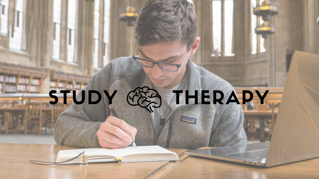 Study Therapy project video thumbnail
