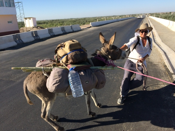 Getting over the Oxus River near Khiva calls on some serious mule-ology.
