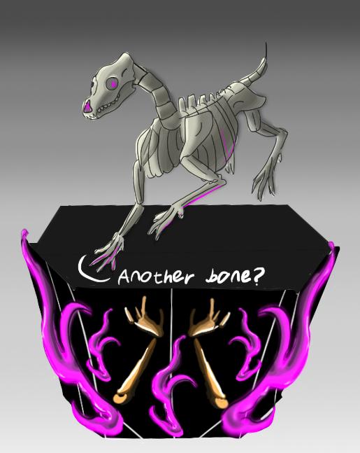 So many bones!