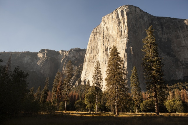There she blows, El Capitan.