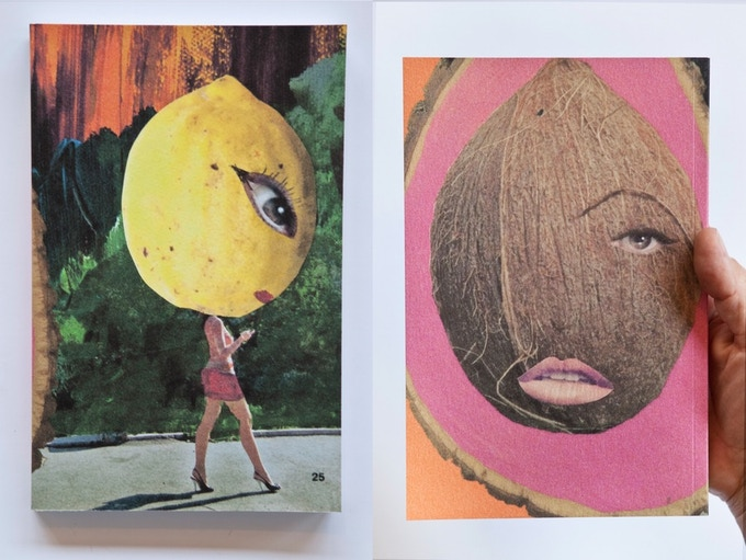 Fallen Fruit notebooks (Street Lemon) - $25