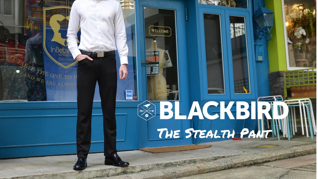 Sweatpants That Look Like Dress Slacks: The Stealth Pant project video thumbnail
