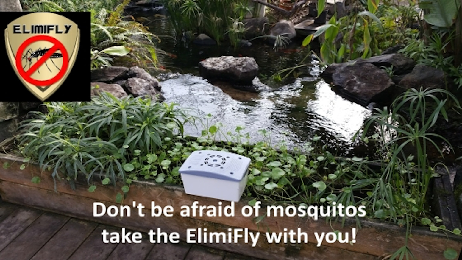 Are you tired of mosquito traps that aren't effective? The eco-friendly ElimiFly is your solution. Made to kill tiger-mosquitos.