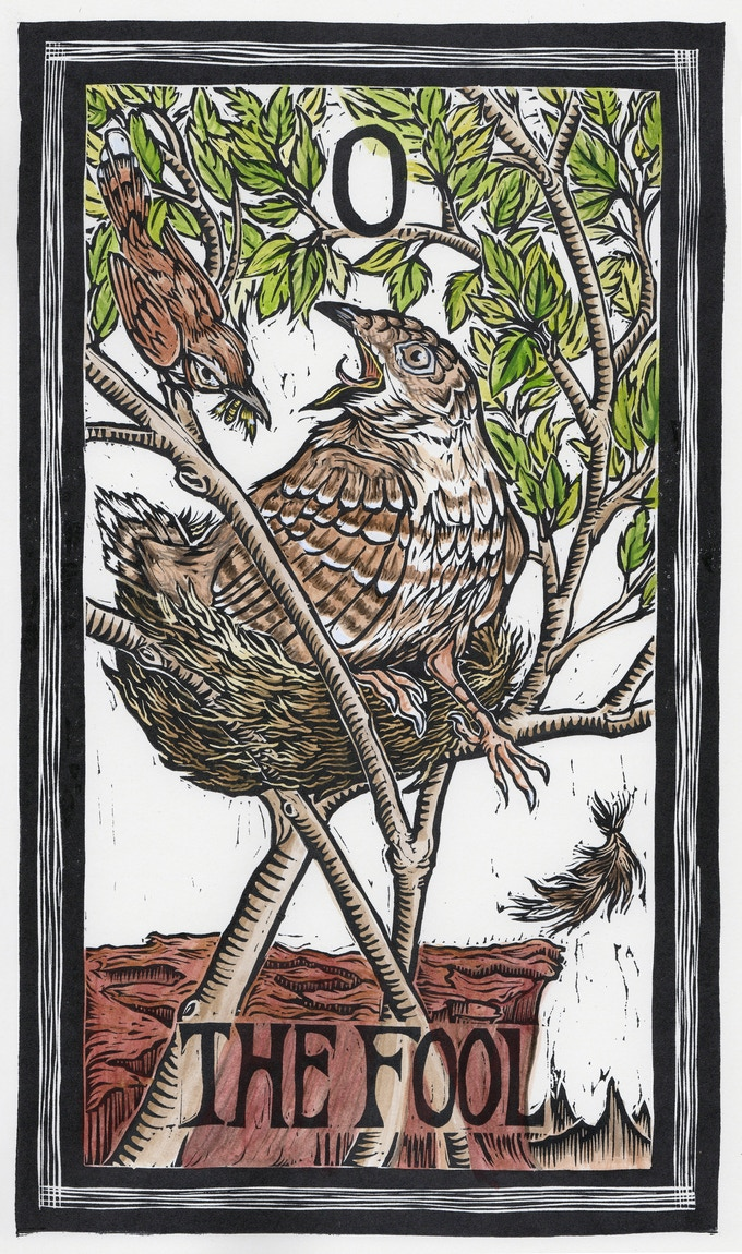 The Brady Tarot: Natural History Meets The Esoteric by Emi