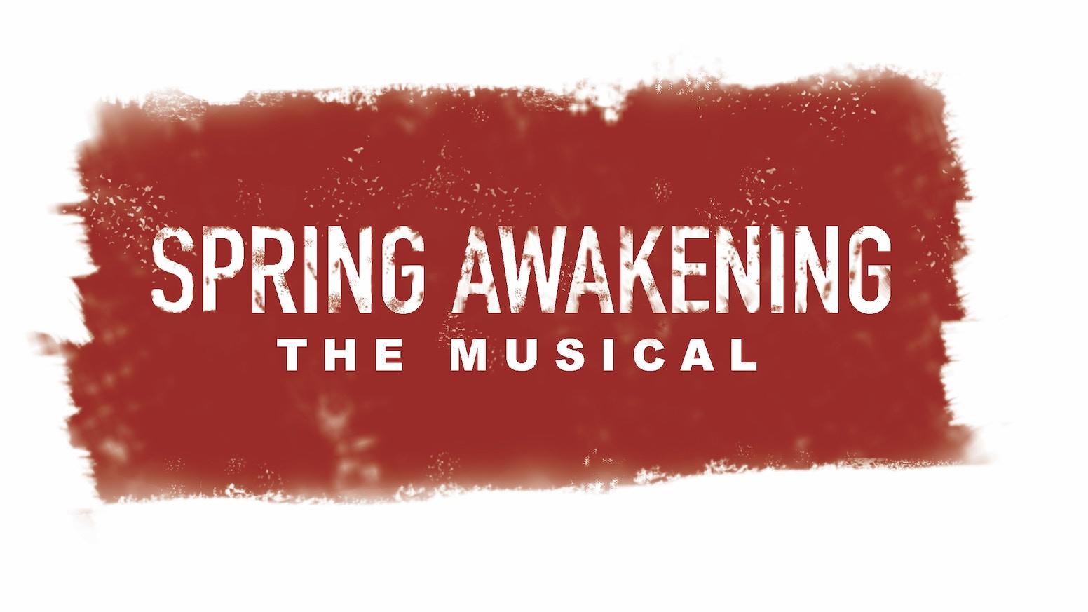 Spring Awakening The Musical by Holly Lewis — Kickstarter