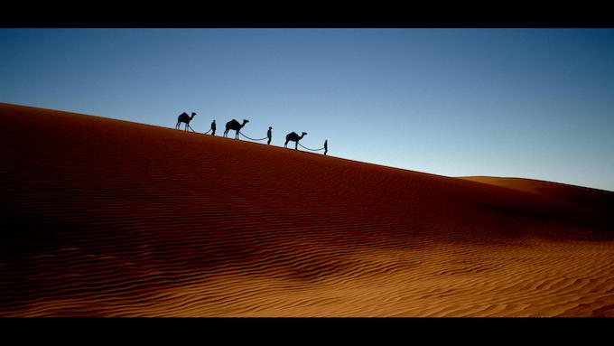 (In-game screenshot) Players can lead caravans