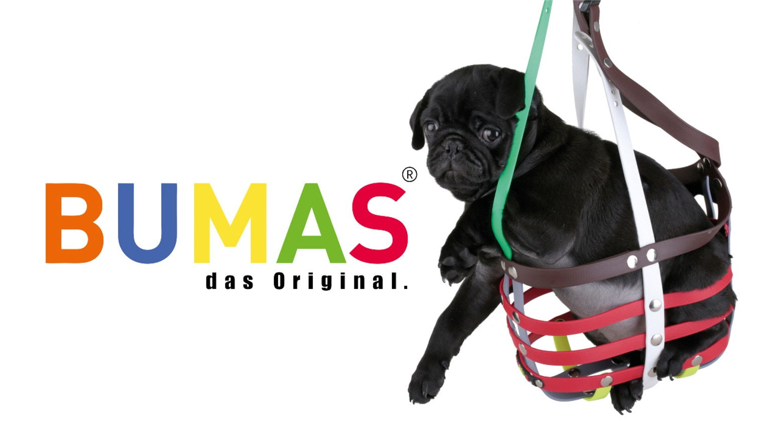 A perfect fitting dog muzzle. Friendly, colorful and unique like your dog. Comfortable and hygienic with an animal welfare certificate. www.bumas.us
