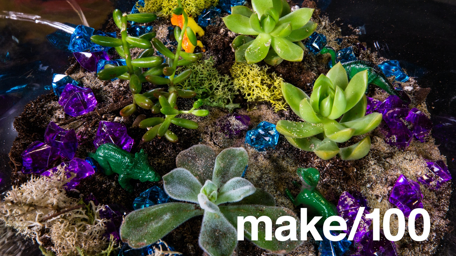 Make 100 diy terrarium kits with area 51 roswell sand by mike do it yourself terrarium kit with 4 succulents nothing to wait for to grow solutioingenieria Images
