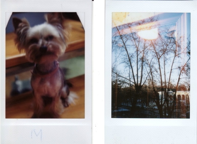P.S. The photo with the dog is the first ever photo made with Jollylook!