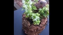 RedRock Art-Oponics Grow Fountain