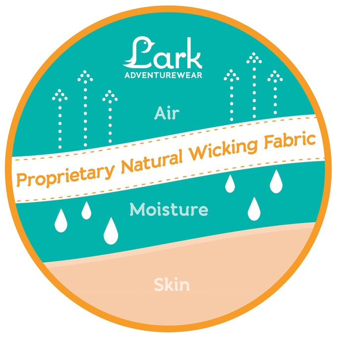 How Lark Fabric Works
