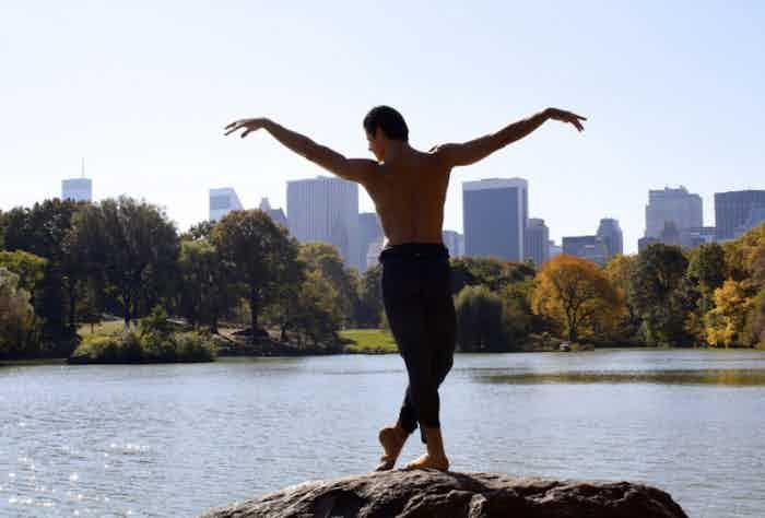 Anatomy of a Male Dancer