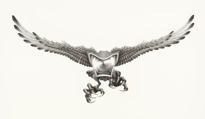 CCTVYLLE - Hybrid Eagle