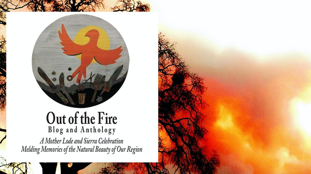 Out of the Fire Anthology project video thumbnail