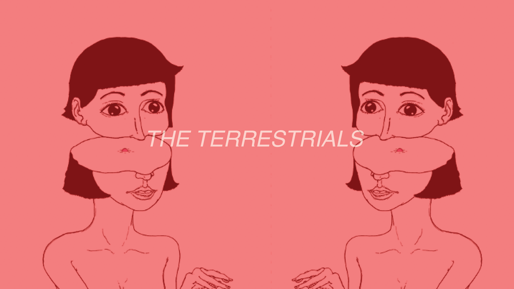 The Terrestrials project video thumbnail