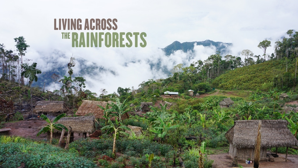 Living Across the Rainforests project video thumbnail