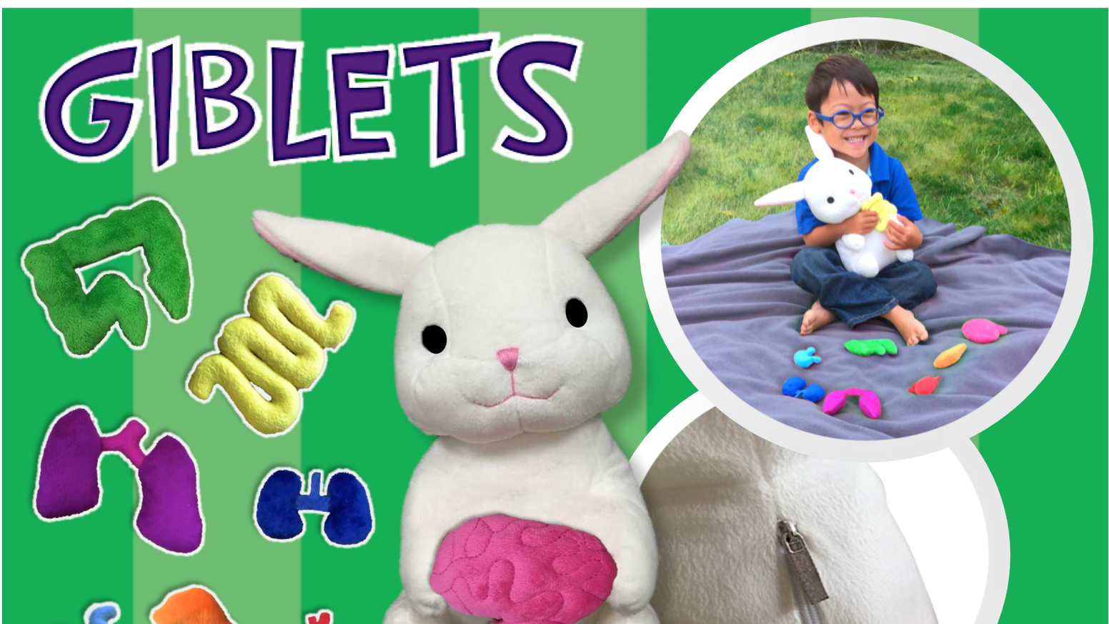 Giblets The Anatomy Bunny Childrens Learning Toy By Emily Zebala