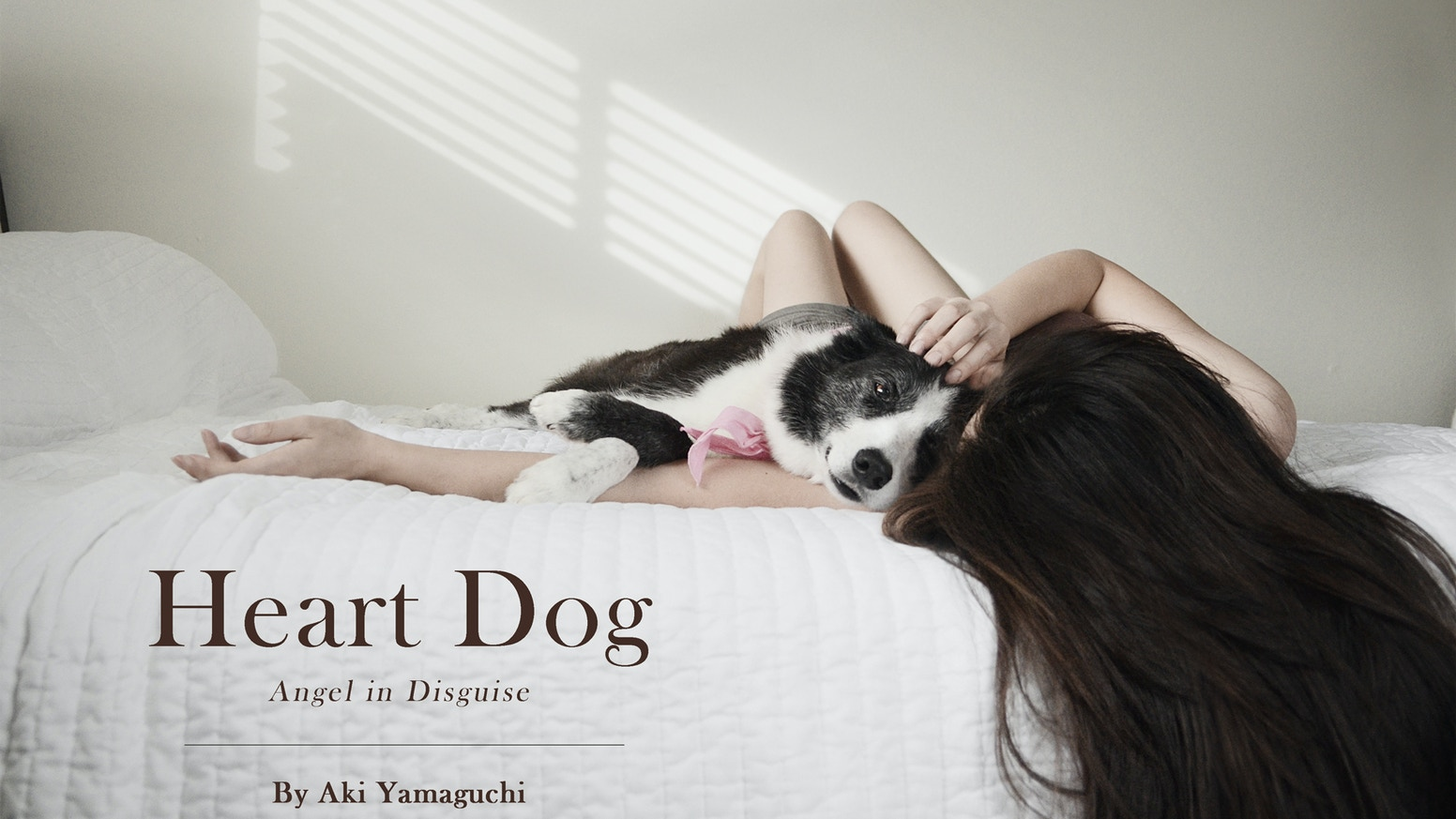 """Heart Dog—Angel in Disguise"" is the completed version of the photographic memoir that was self-published in 2014."