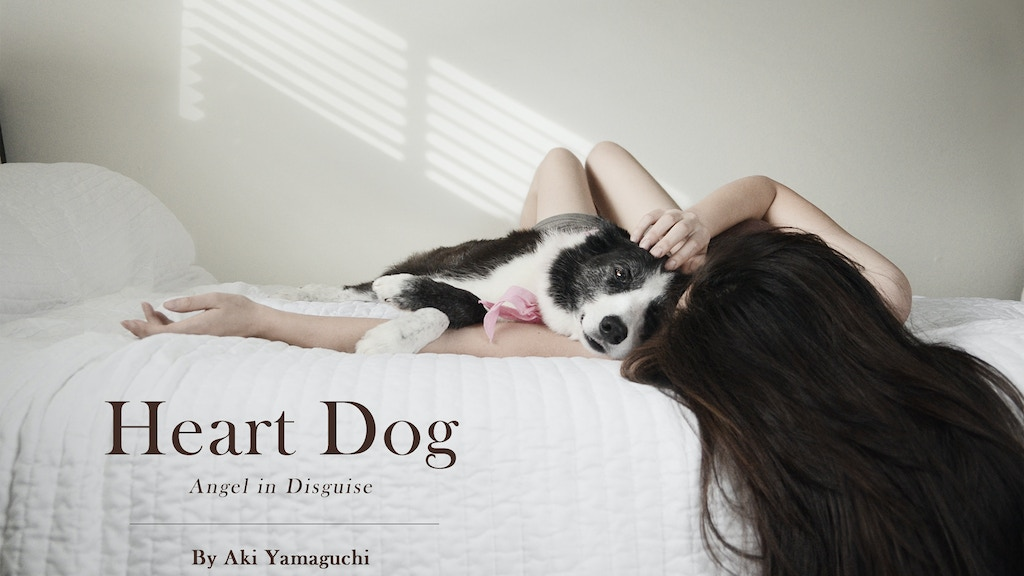 """Photographic memoir """"Heart Dog"""" — Angel in Disguise project video thumbnail"""