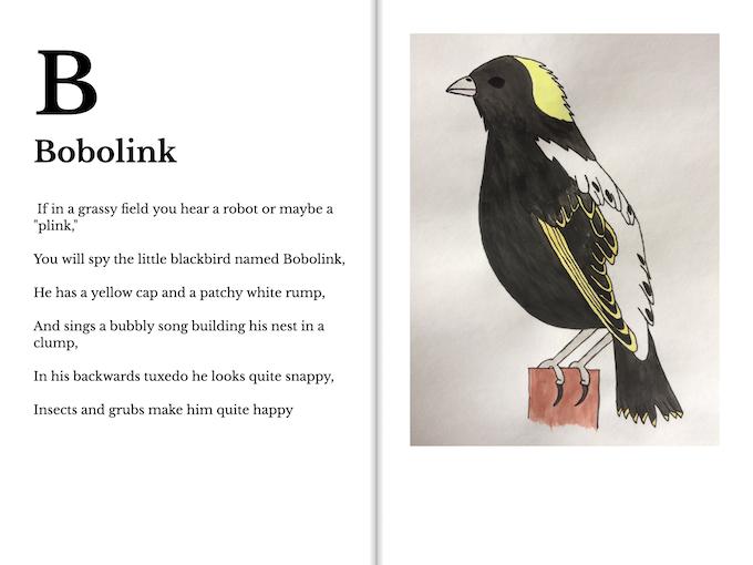 A Wisconsin Bird Alphabet by Caitlynn Nemec — Kickstarter
