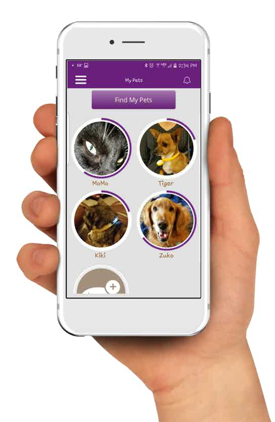 All your pets in one place.